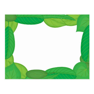 green frame postcard