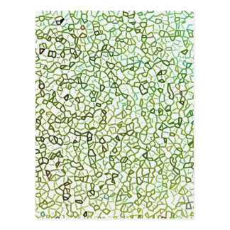 Green Freeform Geometrics Postcards