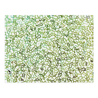 Green Freeform Geometrics Post Cards