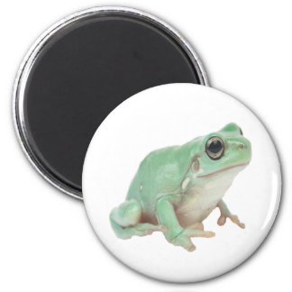 Green Frog 2 Inch Round Magnet