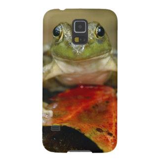 Green frog along the Buffalo Creek bank, Wet Galaxy S5 Case