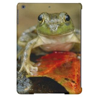 Green frog along the Buffalo Creek bank, Wet iPad Air Cover