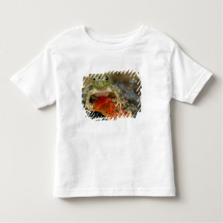 Green frog along the Buffalo Creek bank, Wet Toddler T-shirt