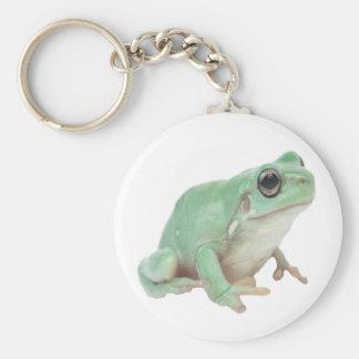 Green Frog Basic Round Button Keychain