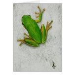 Green Frog Blank Greeting Card
