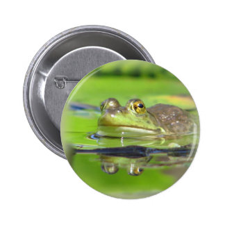 Green Frog Button