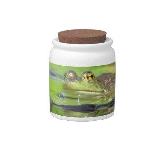 Green Frog Candy Jar