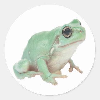 Green Frog Classic Round Sticker