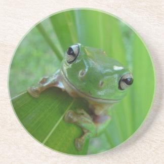 green frog coaster