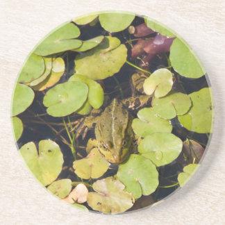 Green frog coasters