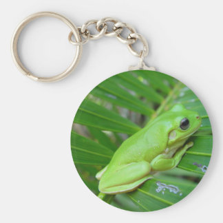 Green frog design key chain