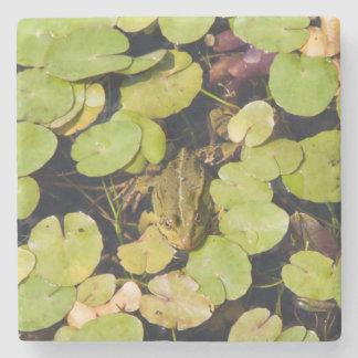 Green frog stone beverage coaster