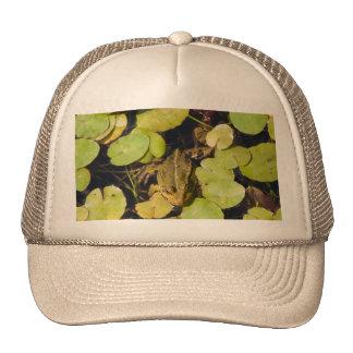 Green frog mesh hat