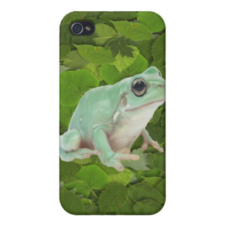 Green Frog iPhone 4/4S Cover