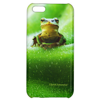 Green Frog Macro Phone Case Case For iPhone 5C
