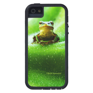 Green Frog Macro Phone Case Cover For iPhone 5