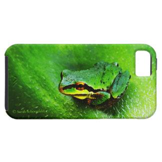Green Frog Macro Phone Case Horizontal iPhone 5 Cases