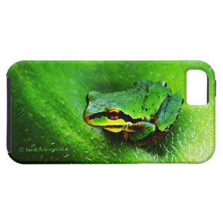 Green Frog Macro Phone Case Horizontal iPhone 5 Covers