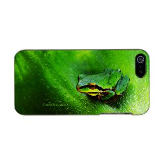 Green Frog Macro Phone Case Horizontal Incipio Feather® Shine iPhone 5 Case
