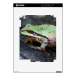 Green Frog on Tree Stump Decal For iPad 2