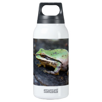 Green Frog on Tree Stump Insulated Water Bottle