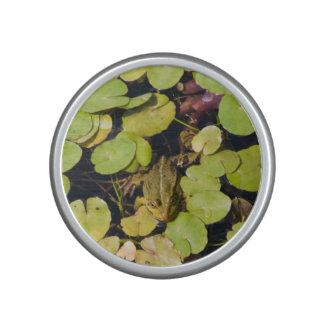 Green frog speaker