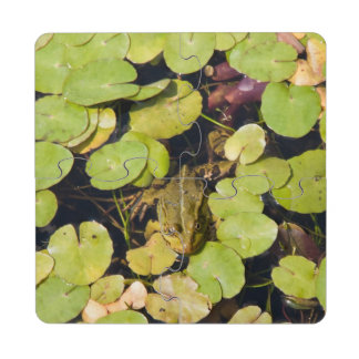 Green frog puzzle coaster