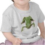 Green-Frog Shirts