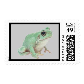 Green Frog Stamp