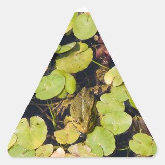 Green frog triangle sticker