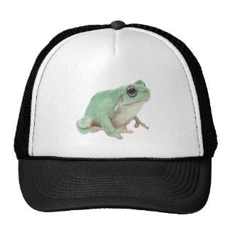 Green Frog Trucker Hat