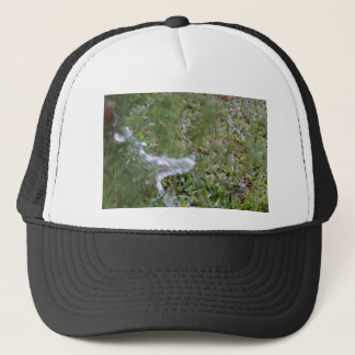 GREEN FROG & WATER IN RURAL QUEENSLND AUSTRALIA TRUCKER HAT
