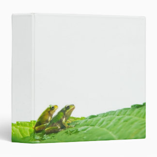 Green frogs on the leave binder