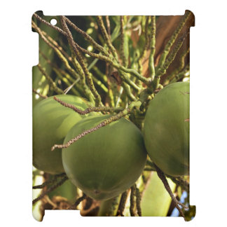 Green Fruits Cover For The iPad