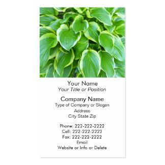 Green Garden Hosta Plant Botanical Foliage Business Card