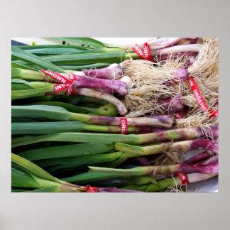 Green Garlic Poster