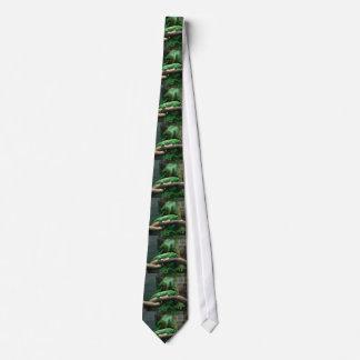 Green gecko in tree tie