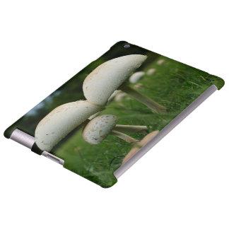 Green Gill Mushroom