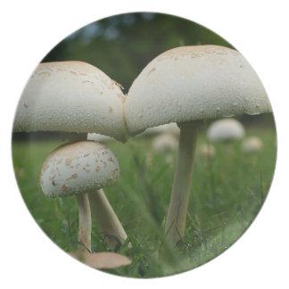 Green Gill Mushroom Dinner Plate
