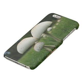Green Gill Mushroom Glossy iPhone 6 Case