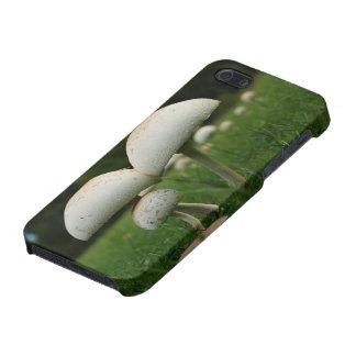 Green Gill Mushroom iPhone 5/5S Case