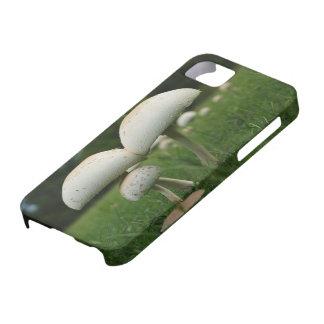 Green Gill Mushroom iPhone 5 Cases