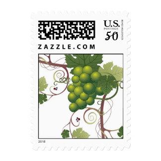 Green grape vine winery wedding stamp