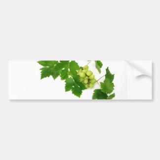 Green Grapes Bumper Sticker
