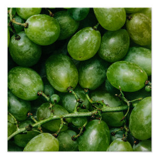 Green Grapes kitchen poster