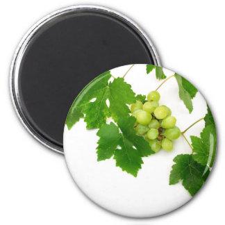 Green Grapes Magnet