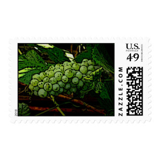 Green Grapes - Perfect for Invitations Postage Stamps