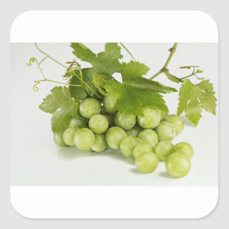 green grapes square sticker