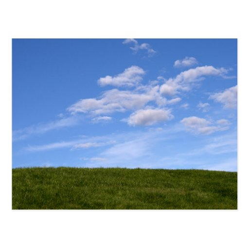 Green Grass and Blue Sky Post Card