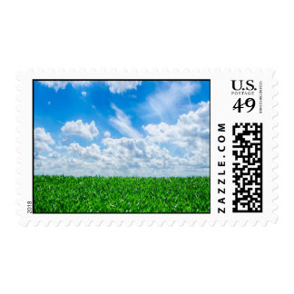 Green grass and blue sky postage stamp